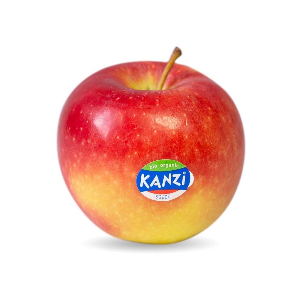 Nicoter / Kanzi®