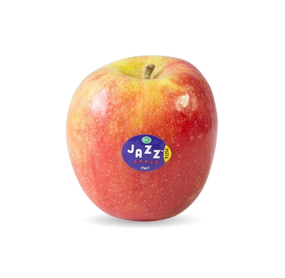 Scifresh / Jazz®