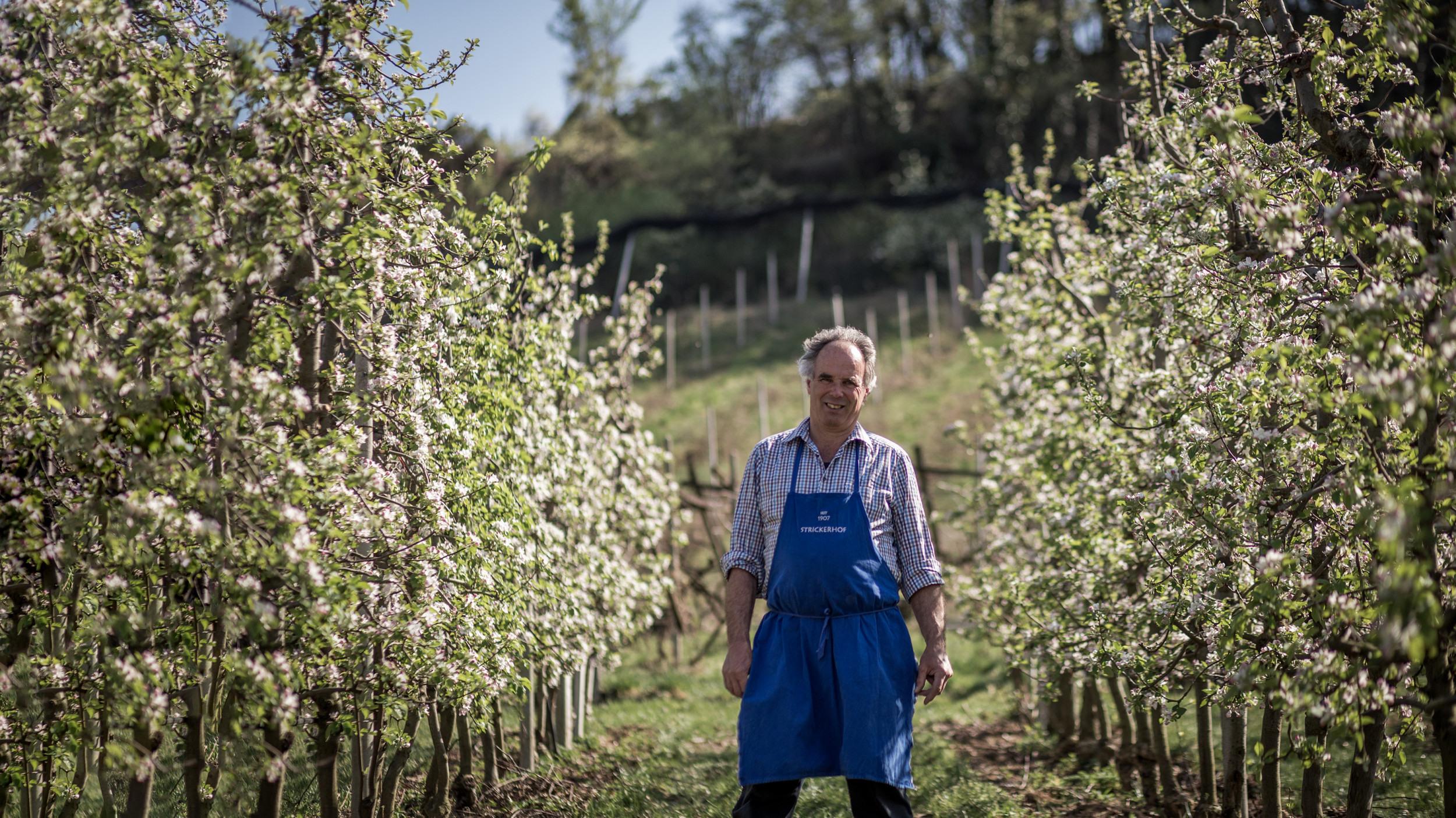 Bio Südtirol 2019 75 web