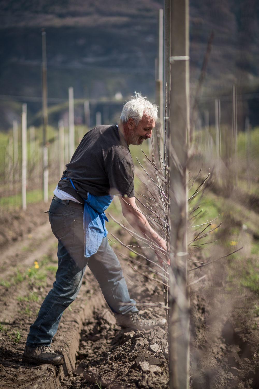 Bio Südtirol 2018 web 118